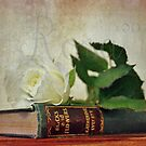 Rose and Book Still Life by Astrid Ewing Photography