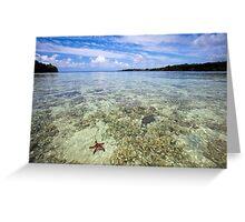 Starfish in ocean, Vanuatu, South Pacific Ocean Greeting Card