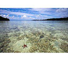 Starfish in ocean, Vanuatu, South Pacific Ocean Photographic Print