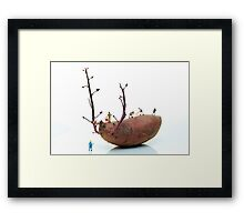 Cultivation on a sweet potato Framed Print