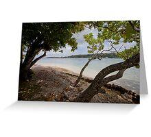 Seashore and trees, Vanuatu, South Pacific Ocean Greeting Card