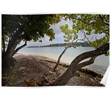 Seashore and trees, Vanuatu, South Pacific Ocean Poster