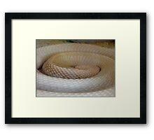 Coils Of The Sleeping Cobra Framed Print