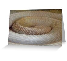 Coils Of The Sleeping Cobra Greeting Card
