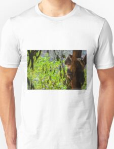 Brand New Photography T-Shirt