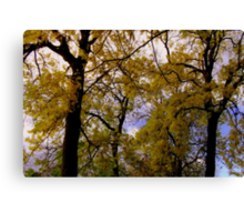 Autumn Colour's Canvas Print