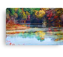 Parker Mills Pond foliage Canvas Print