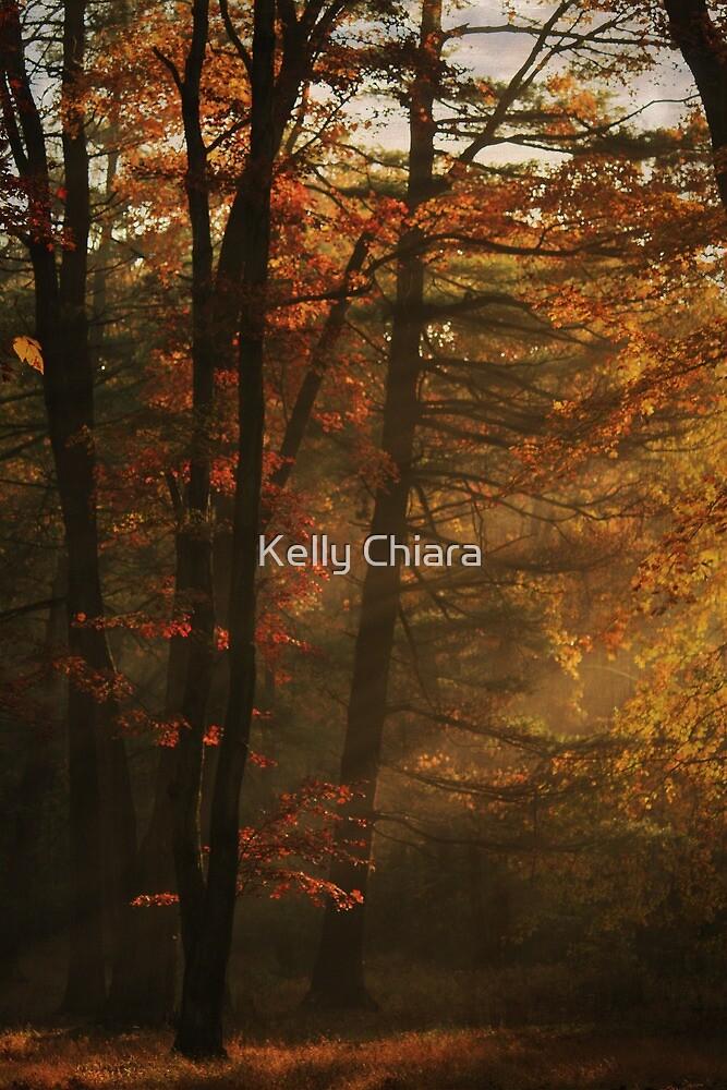 Whispering Light by Kelly Chiara