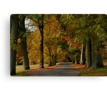 Autumn Colours in Camperdown Park Canvas Print
