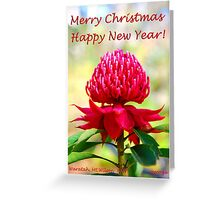Aussie Christmas Card Greeting Card