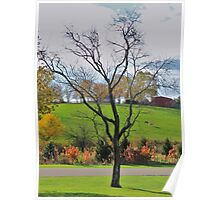 Fall on a  Kentucky Pasture Poster