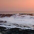 Will I or Won't I? Currumbin - Gold Coast Australia by Beth  Wode