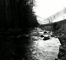 Black and White of the Crowsnest Pass by ntsotame