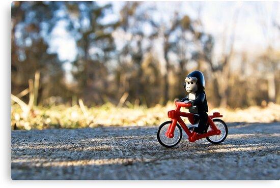 Gorillas bike, too by Dan Phelps