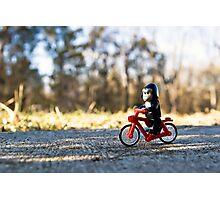 Gorillas bike, too Photographic Print