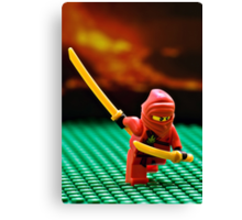 The Red Ninja Canvas Print