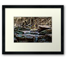 Cross the streams Framed Print