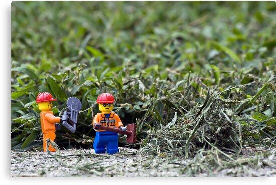 Yard Work by Dan Phelps