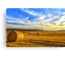 Halcyon Harvest Days Canvas Print
