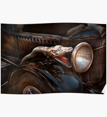 Car - Steamer - Snake Charmer  Poster