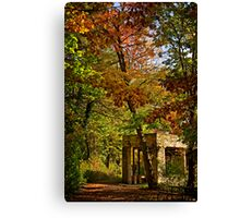 Saturday in the Park Canvas Print