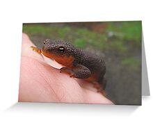 Friendly Salamander  Greeting Card