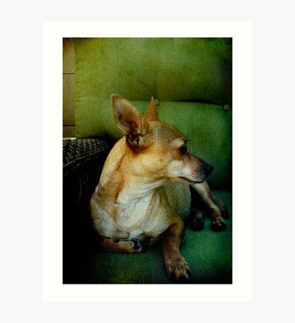 Goldie - A love story Art Print