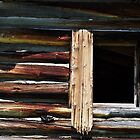 Weathered Wood by CADavis