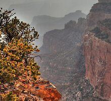 Misty canyon by zumi