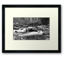 White in Black Framed Print