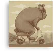 Bunny Ride Canvas Print
