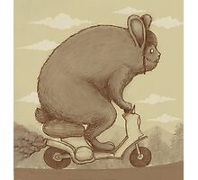 Bunny Ride Photographic Print