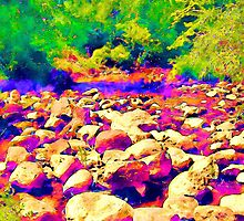 Colorful Rocky Riverbed by Phil Perkins