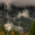Kootenay Fall by JamesA1