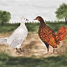 Golden Laced Wyandotte Chickens Watercolor Painting by Sarah Countiss
