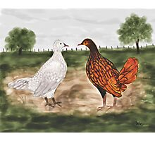 Golden Laced Wyandotte Chickens Watercolor Painting Photographic Print