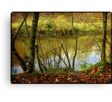 River running © Canvas Print