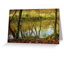 River running © Greeting Card