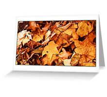 """ Autumn Leaves"" Greeting Card"