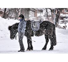Snowy horse Photographic Print
