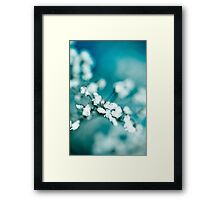 Grass Flower 2 Framed Print
