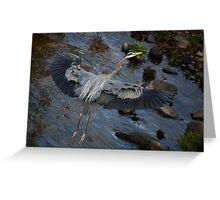 Heron Landing, Jordan Lake, NC  Greeting Card