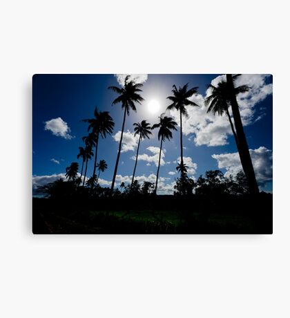 Silhouetted palm trees, Vanuatu, South Pacific Ocean Canvas Print