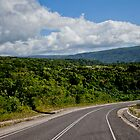 Landscape and tarmac road, Vanuatu, South Pacific Ocean by Sharpeyeimages