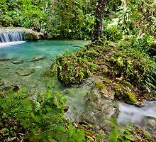 Calming flowing waterfall, Vanuatu, South Pacific Ocean by Sharpeyeimages