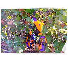 Witch riding through the sea grapes Poster