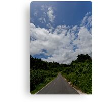 Landscape and tarmac road, Vanuatu, South Pacific Ocean Canvas Print