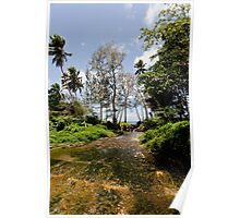 Stream flowing to seashore, Vanuatu, South Pacific Ocean Poster