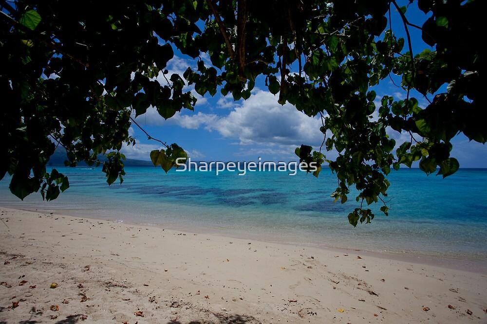 Seashore, Vanuatu, South Pacific Ocean by Sharpeyeimages