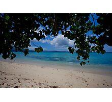 Seashore, Vanuatu, South Pacific Ocean Photographic Print